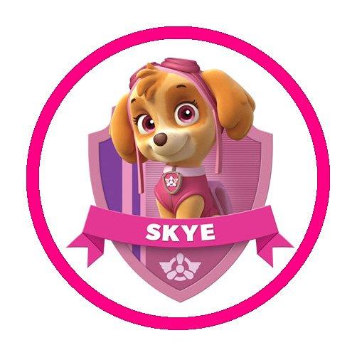 Skye Paw Patrol Characters