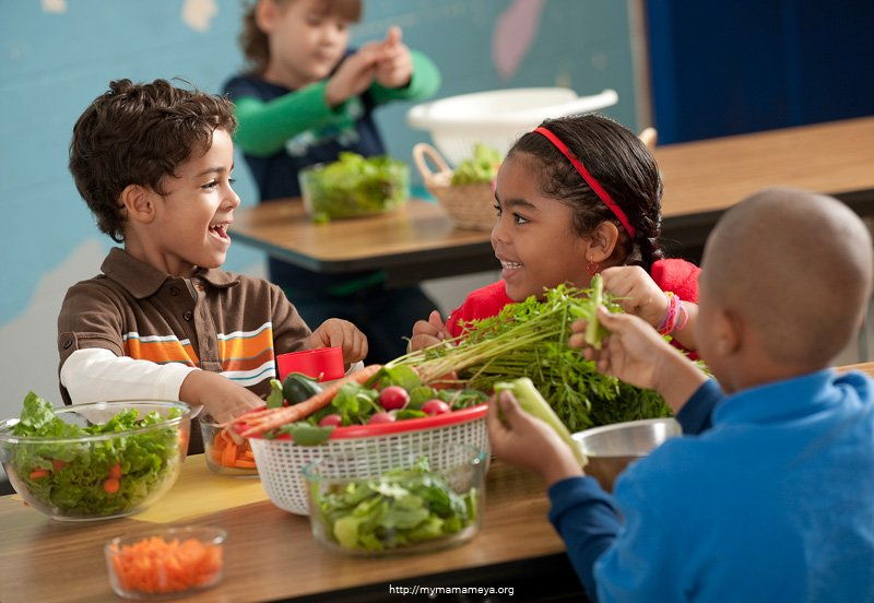 teaching kids about healthy eating