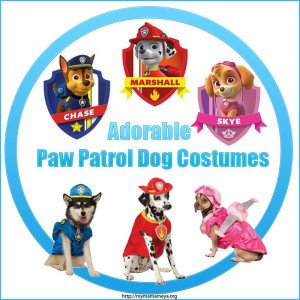 Adorable Paw Patrol Costumes For Dogs