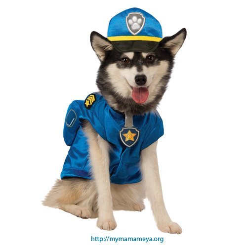 Chase Paw Patrol Costumes for Dogs