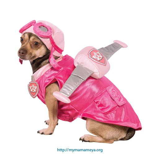 Skye Paw Patrol Costumes For Dogs