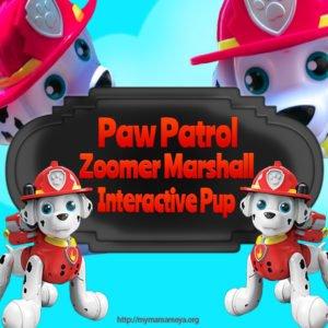 Paw Patrol Zoomer Marshall Interactive Pup